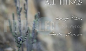 All things through Christ | ProSelect-images