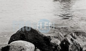 Arniston Harbour | ProSelect-images