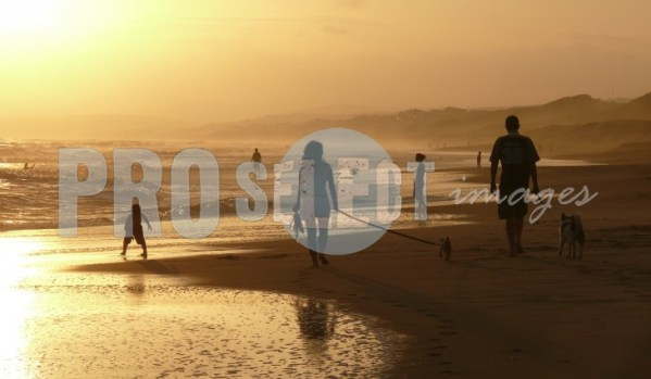 Beach stroll Walker bay | ProSelect-images