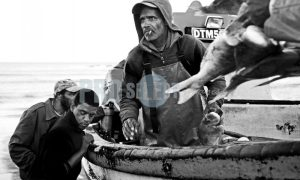 Early morning catch | ProSelect-images