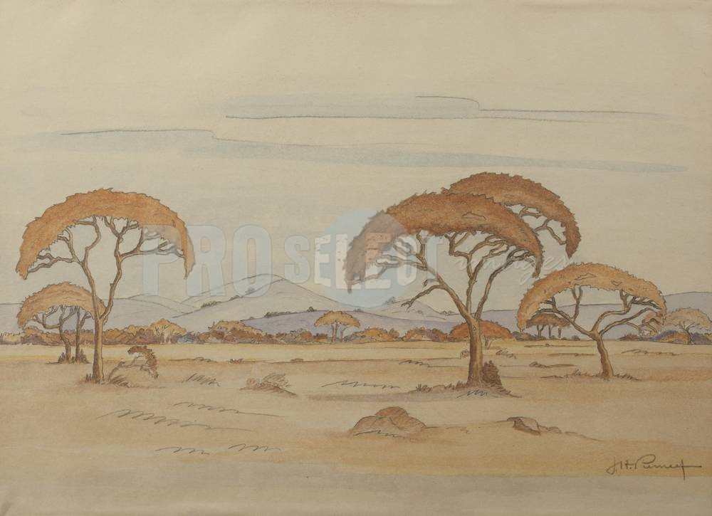JH Pierneef - Umbrella thorn trees