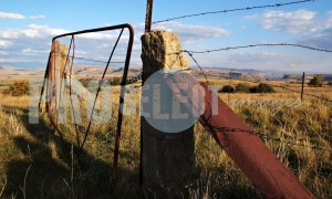 Old farm gate Clarens | ProSelect-images