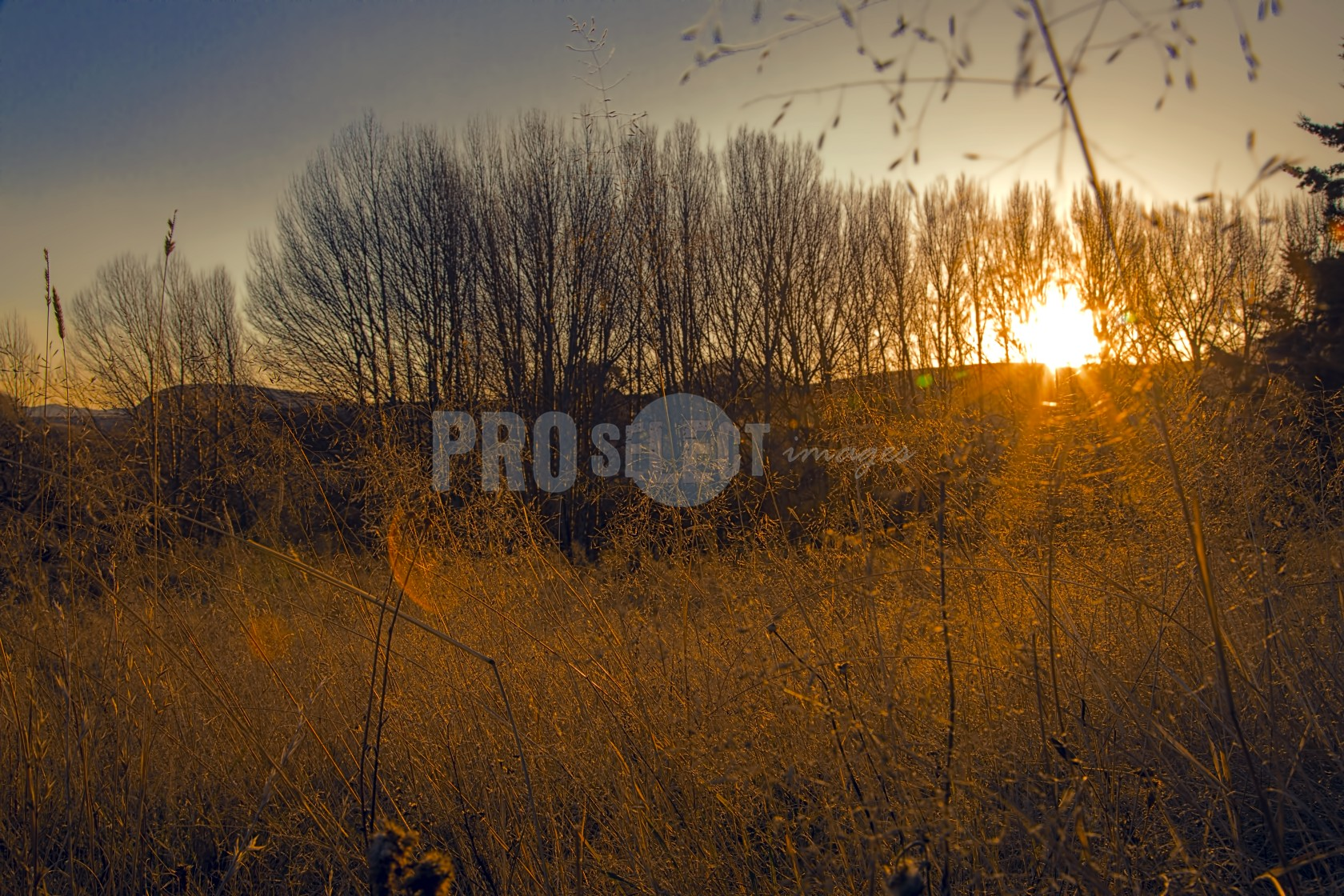 Sunset Steepside Barkley East | ProSelect-images