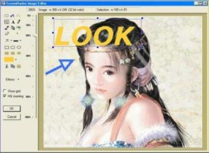 ScreenHunter Free 7.0.409 Crack