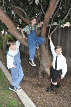 3 in tree