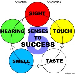 Five Senses Diagram 2005 Nissan Altima Belt Prosperity Anonymous 5 To Success Attraction Attenuation