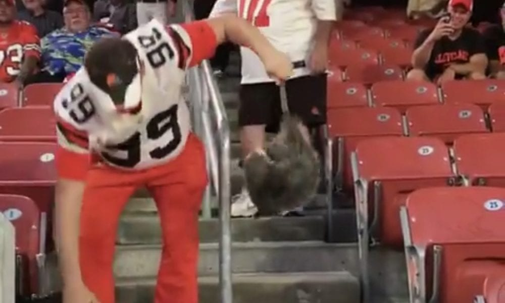 Browns Fan Catches Possum In Stands During TNF (Video) – Pro Sports Extra