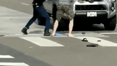 Photo of Citizen Fights Off and Knocks Out Thug In Front of Car After Getting Provoked… Then Checks in on Him After (Video)
