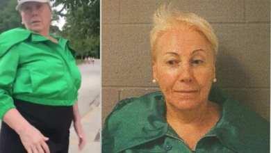 Photo of ARRESTED: Irene Donoshaytis Accuses Black Bike Driver Of Trespassing On A Public Pier – Winnetka, Illinois – Hits Him