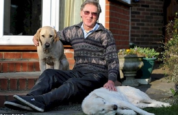 Пожилой пес-поводырь заболел и ослеп. Хозяин не бросил его и нашел оригинальное решение проблемы