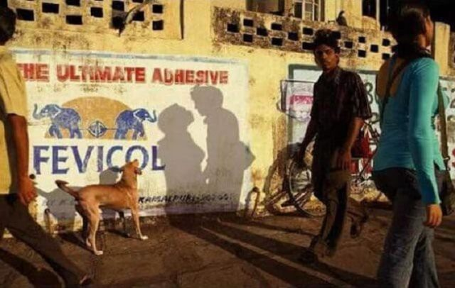 15 ржачных фото, на которых тень все испортила