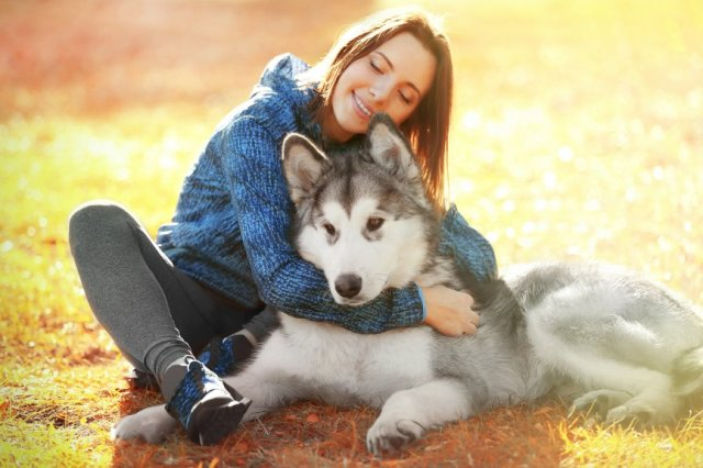 Он сбил девушку и отнес ее умирать в лес…От смерти пострадавшую спасла бездомная собака.