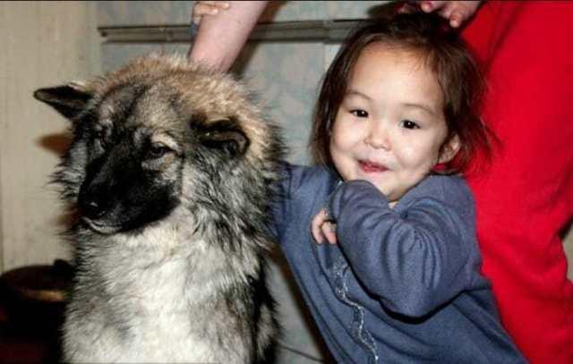 Пытаясь помочь замёрзшей в снегу собаке, люди с ужасом обнаружили, что она что-то прятала под собой