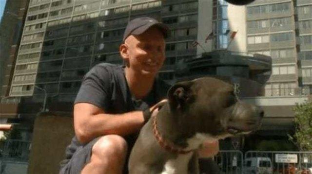 Полицейские спасли питбуля, которого жестоко избил хозяин