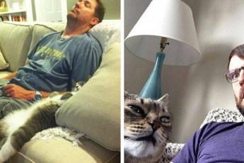 15 уморительных фотографий, на которых коты и их владельцы на одной волне