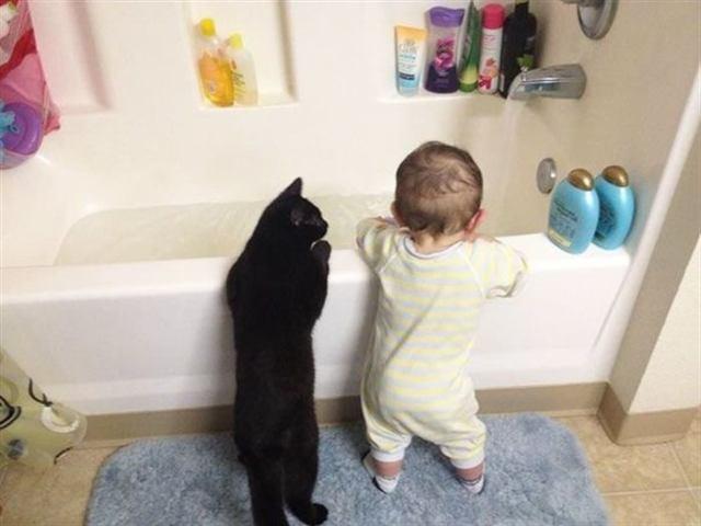 20 фотодоказательств, что всем детям необходим кот