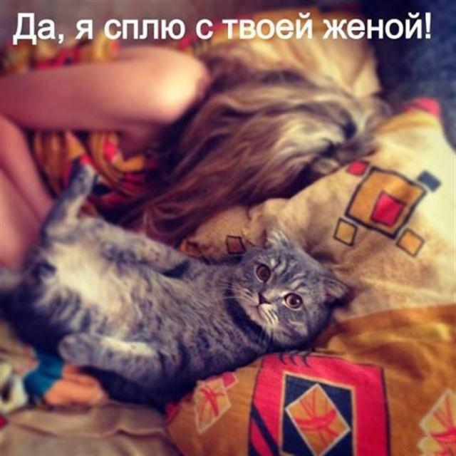 Уморительные фото для великолепного настроения