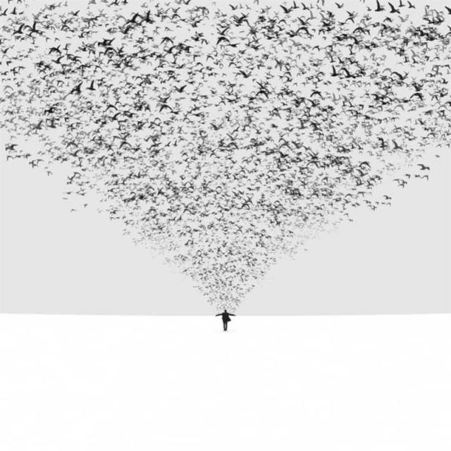 Самые минималистичные фотографии, без излишеств