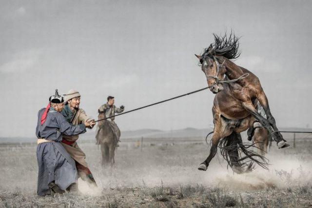 20 впечатляющих снимков с конкурса фотографии Sony 2018