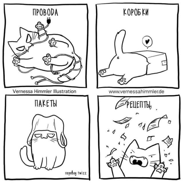 Комикс, который покажет каково будет жить, если вы заведете кота
