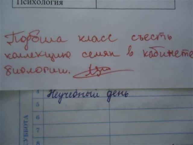 Невероятно смешные послания в дневниках школьников