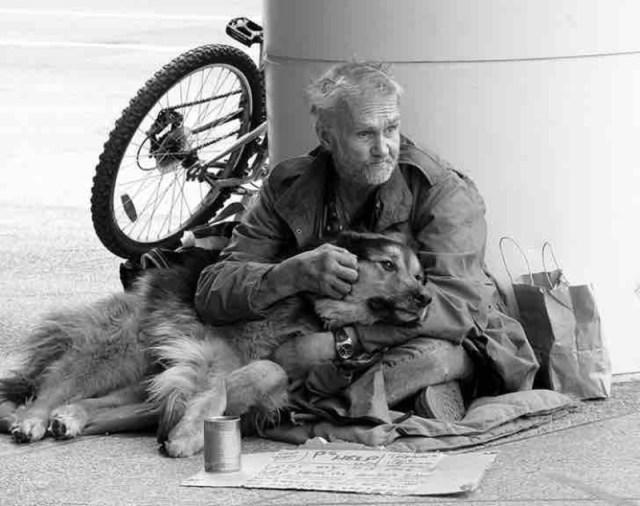 Бездомные, которые собакам отдали все