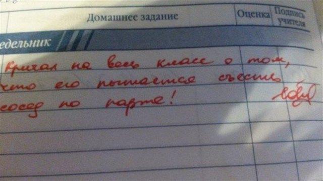 Забавные записи в дневниках от веселых учителей