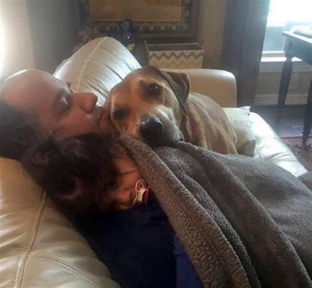 Фото невероятно преданности и любви собак и людей
