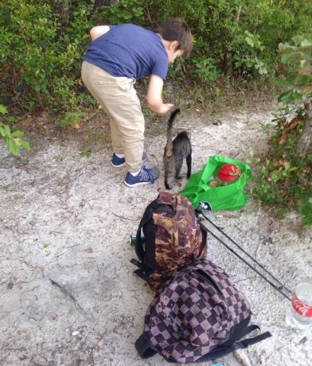 Отец с сыном поехали на рыбалку, а вернулись с котятами и кошкой