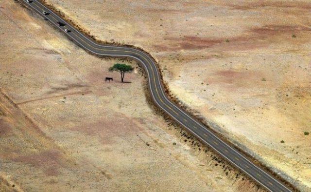 12 сильных фото о том, как выглядит уважение к природе
