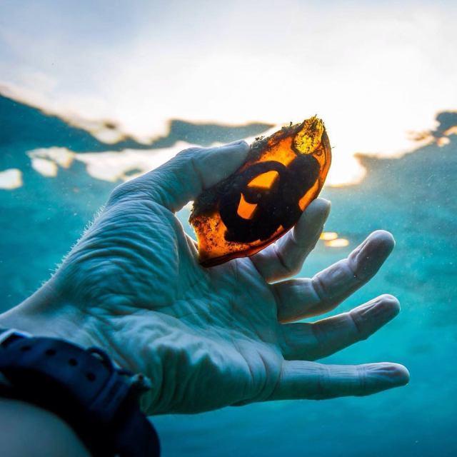 20 фото удивительных вещей из окружающего нас мира