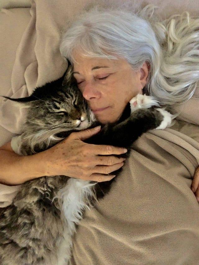 15 трогательных снимков, показывающих любовь хозяев и их питомцев