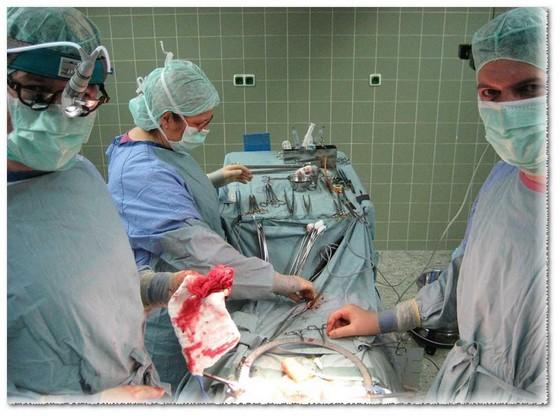 Инвалидность при кастрации при раке простаты