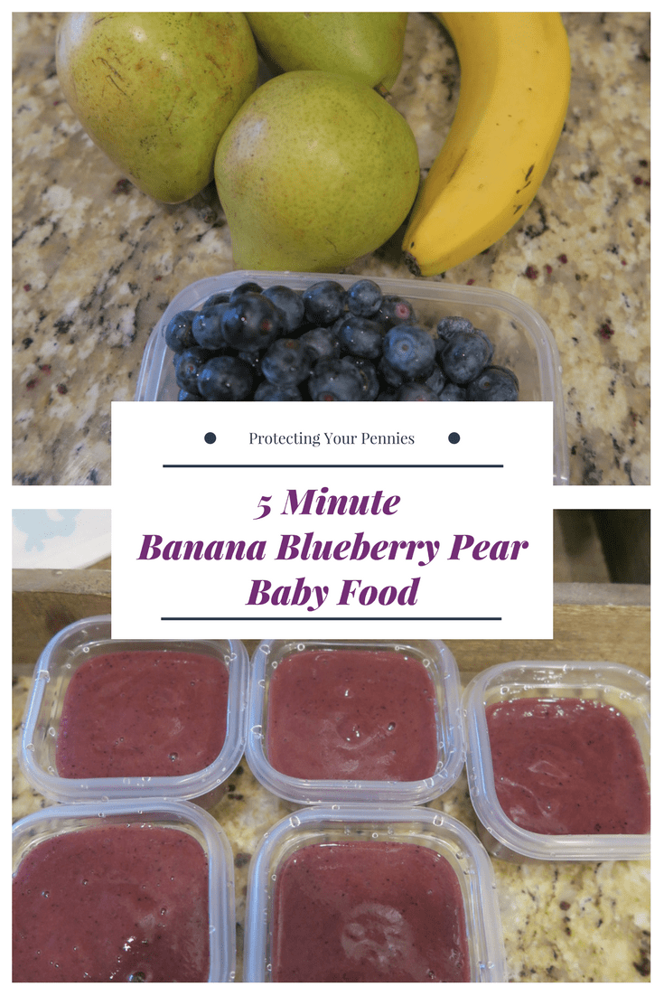 Blueberry Puree Baby Food Recipes