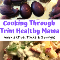 Cooking Through Trim Healthy Mama Week 5 - Cooking Through Cookbook
