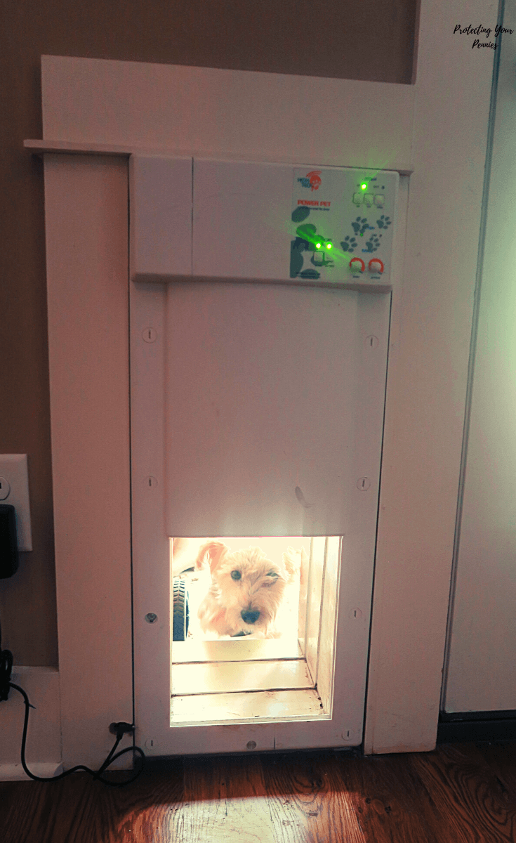 Electronic Pet Door Installed in Wall