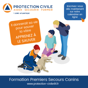 formations secours canins