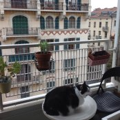 Filet transparent sur balcon en ville