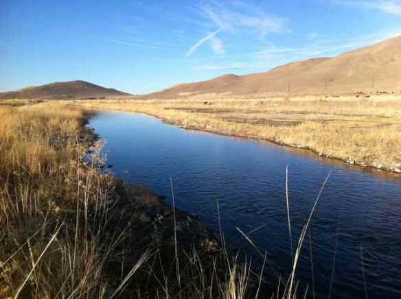 Water for wildlife in Nevada including wild horses (Photo © Anne Novak, all rights reserved.)