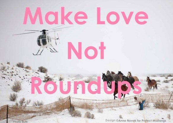 Make LOVE Not Roundups! www.ProtectMustangs.org