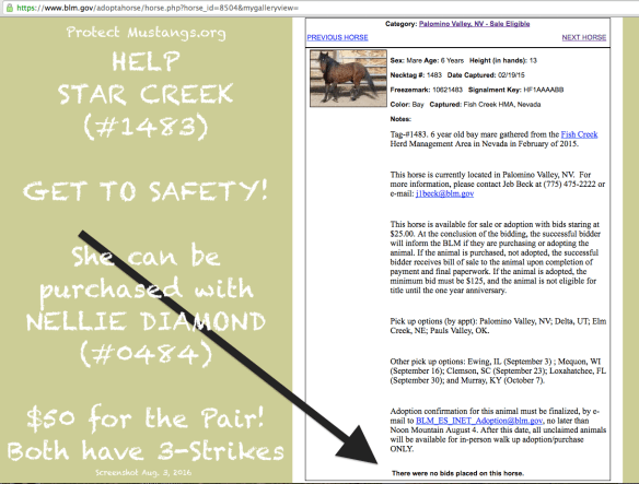 PM Star Creek #1483 No Bidder Screen Shot 2016-08-03 at 2.57.55 AM