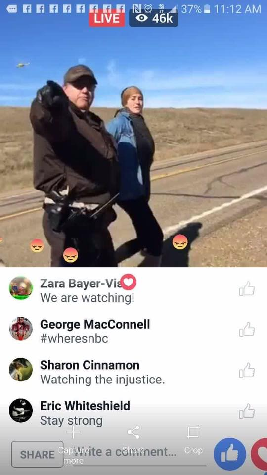 pm-nodapl-shailene-woodley-arrested