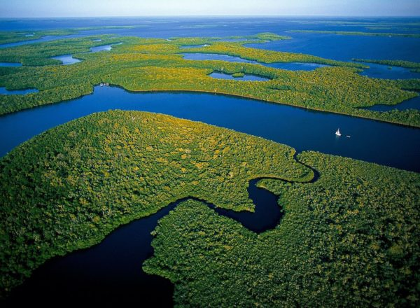 everglades national park2
