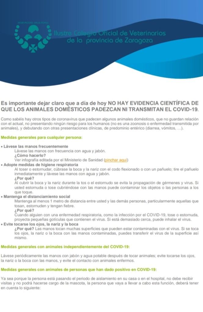 CORONA VETERINARIO MEDIDAS1