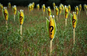 image of GM foods safe beyond reasonable doubt?