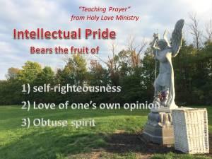 Intellectual Pride