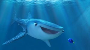 what type of fish is Dory, Finding Dory, Destiny, Dory, Whale Shark
