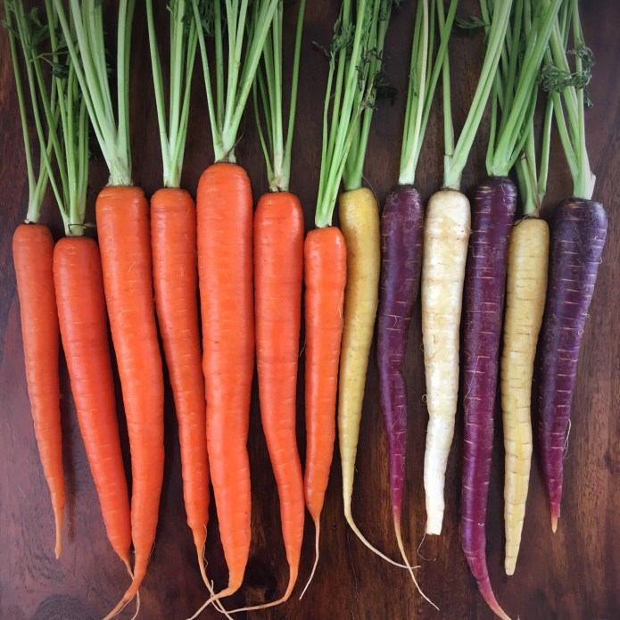 Carrot Crush: Orange and Rainbow Carrots, in tact