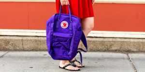 Bacteria and virus contaminated backpacks and purses