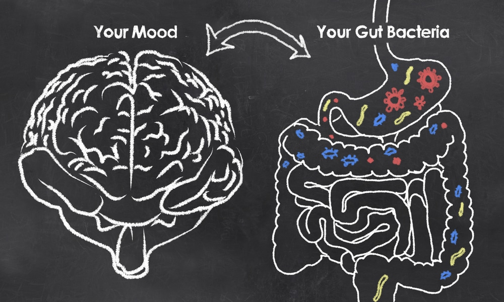 gut probiotic brain and external skin probiotics are all linked